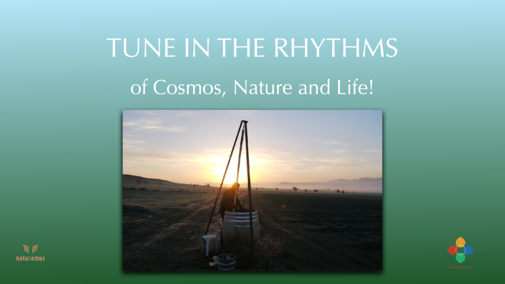 Tune in the Rhythms of cosmos, nature and life