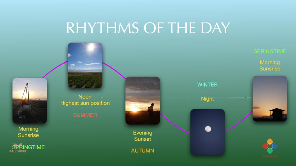 rhythms of the day