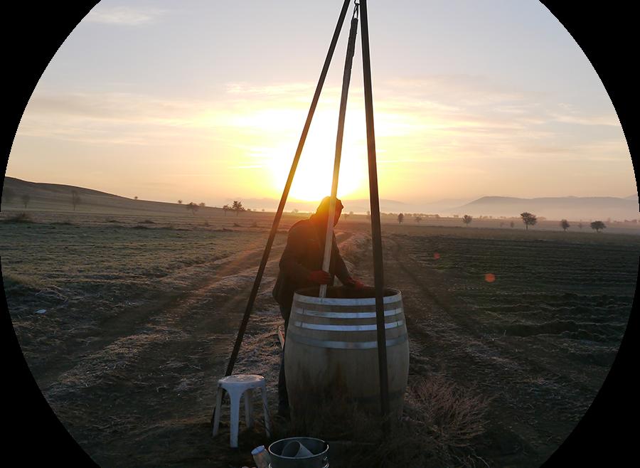 Landwirtschaft in der Tükrei